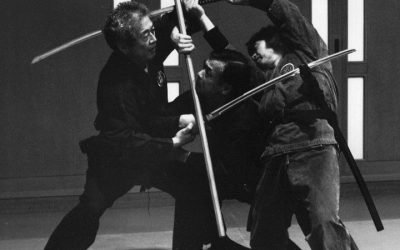 The Martial Arts Instructors of Japan