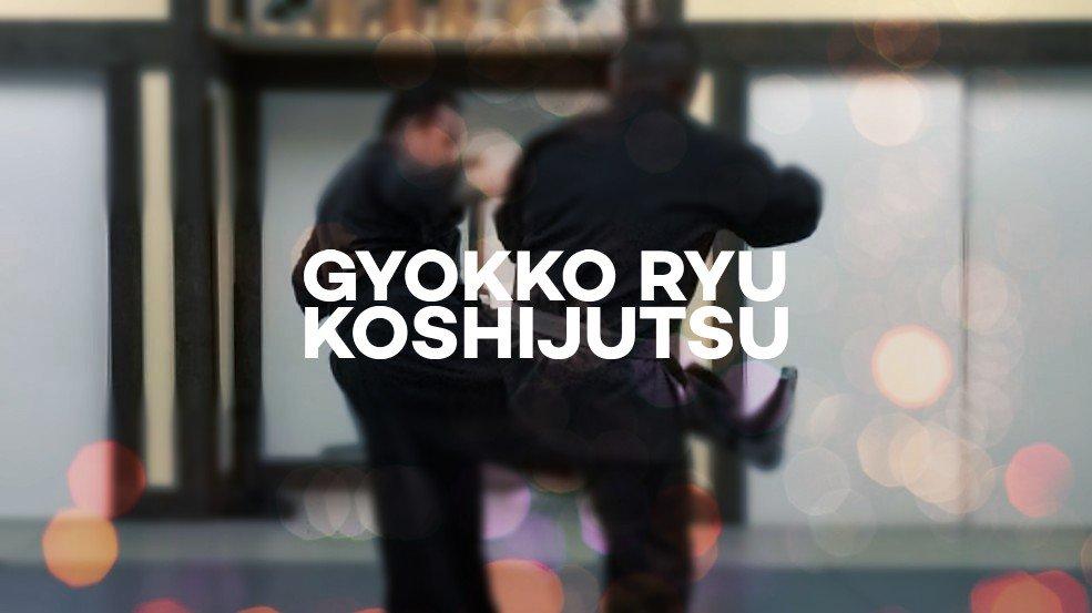 Gyokko Ryu Koshijutsu