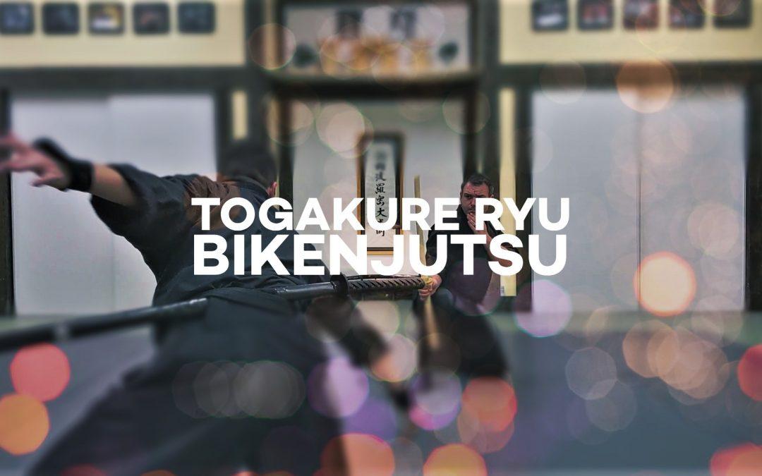 Togakure Ryu Bikenjutsu